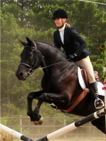 Zephyr's pretty jump